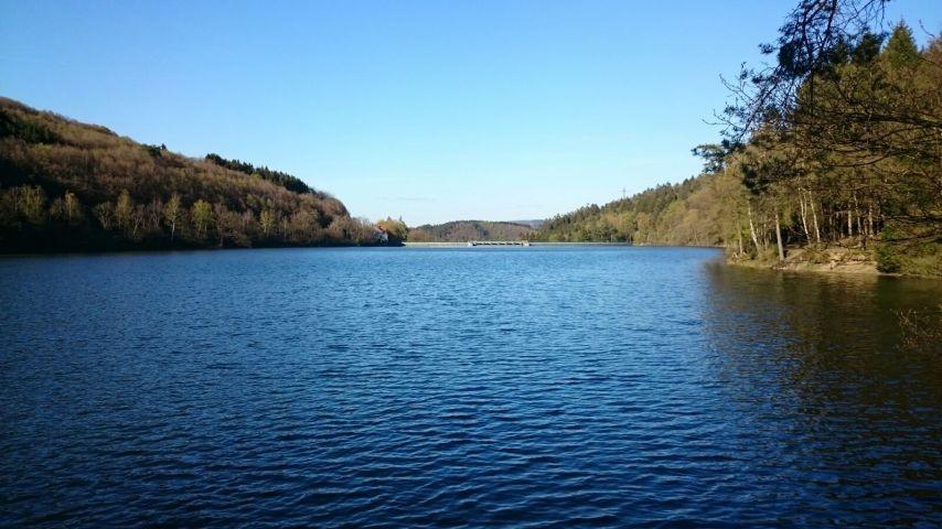 Oestertalsperre - hier können Ihr Hund und Sie schwimmen