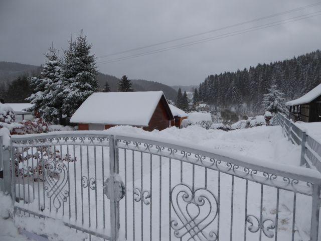 Winter Jan/Feb.2017