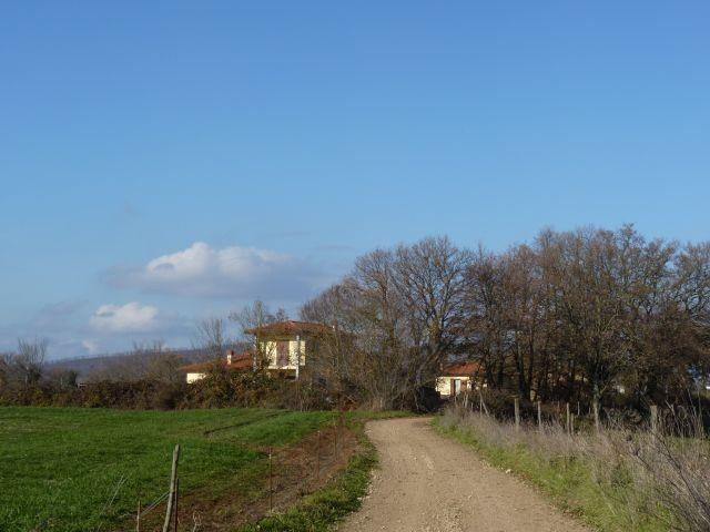 wunderschöner, ruhiger Spazierweg direkt vor dem Haus