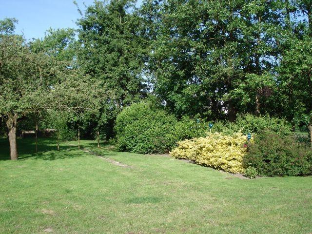 eigener Garten mit Terrasse, eingezäunt