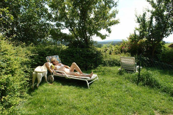 Garten mit Liegestuhl und eingezäunten Grundstück