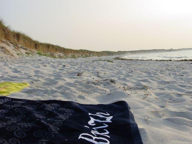 soviel ist meistens los am Strand :-)