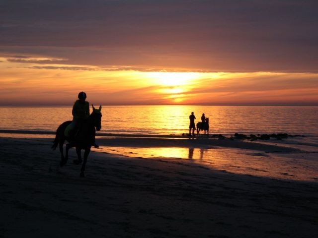 Ausritt beim Sonnenuntergang