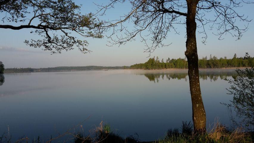 Der See Bolmen am Morgen
