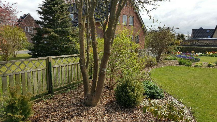 Einzäunung und Garten