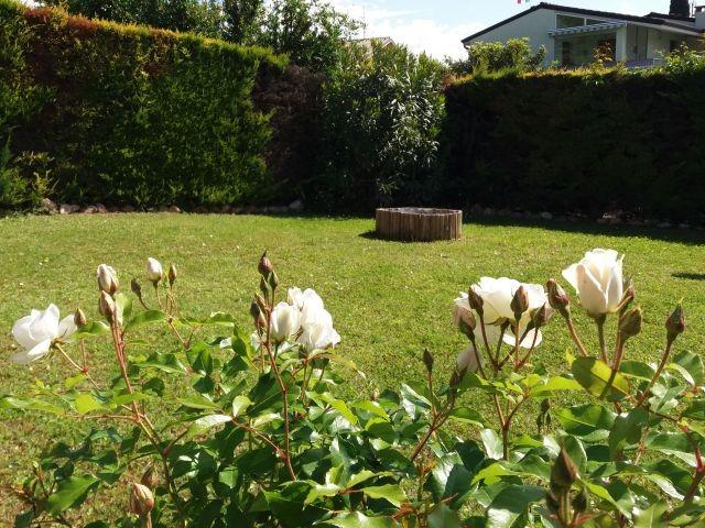 Bild vom privaten Garten