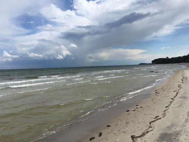 Hunde Strand in Göhren Südstrand