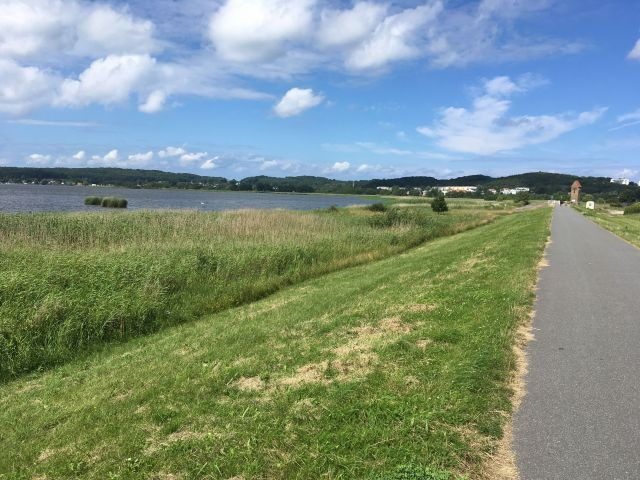 Blick auf Selliner See und Deich- gut zum Spazieren mit dem Hund