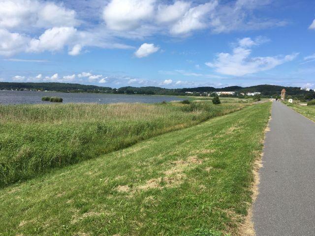 Blick auf den Selliner See und Deich- gut zum Spazierengehen mit dem Hund