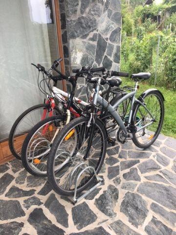 Qualitäts Fahrräder incl.Helm