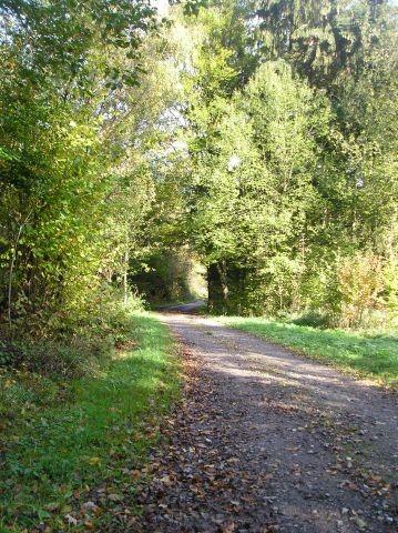 Ahr-Venn-Weg bei Widdau