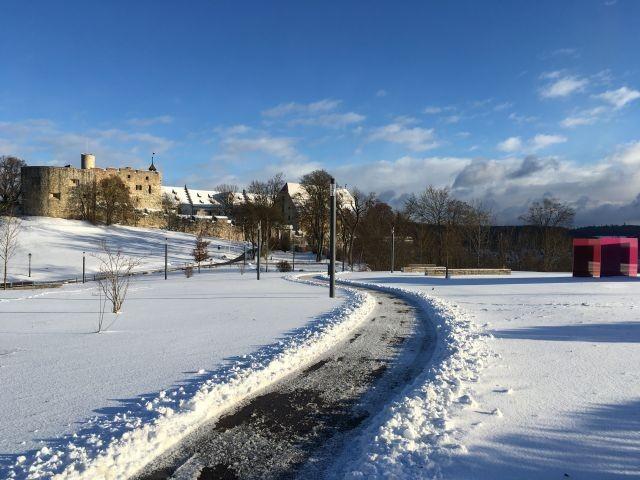 Blick zum Schloss Winter