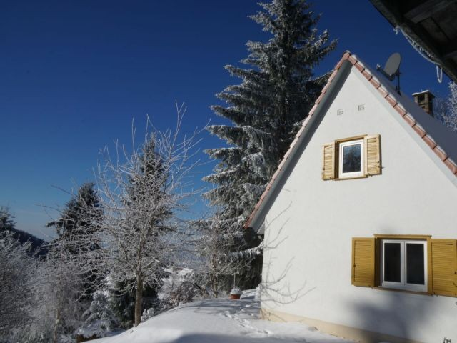 Chalet Bergweide in Winterlandschaft