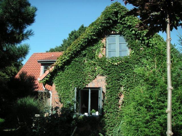 Green Garden Cottage mit eingezäuntem Garten nahe Ostsee und Schlei für 2-7 Pers.