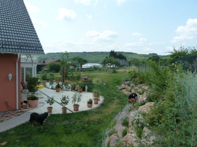 Blick in den Nachbargarten