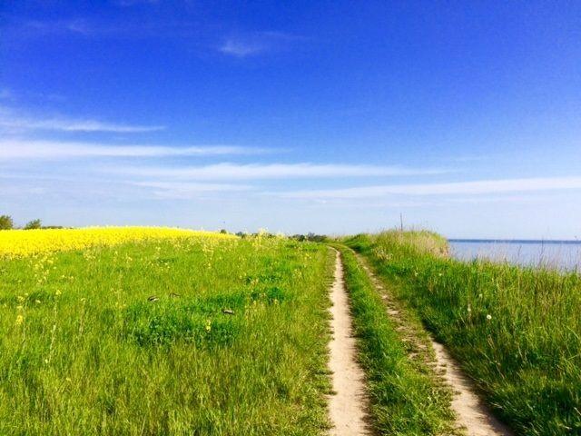 Spazierweg an der Steilküste