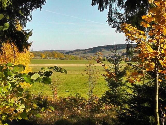 vom Rundwanderweg am Kalkberg - ein Teil des Ortes