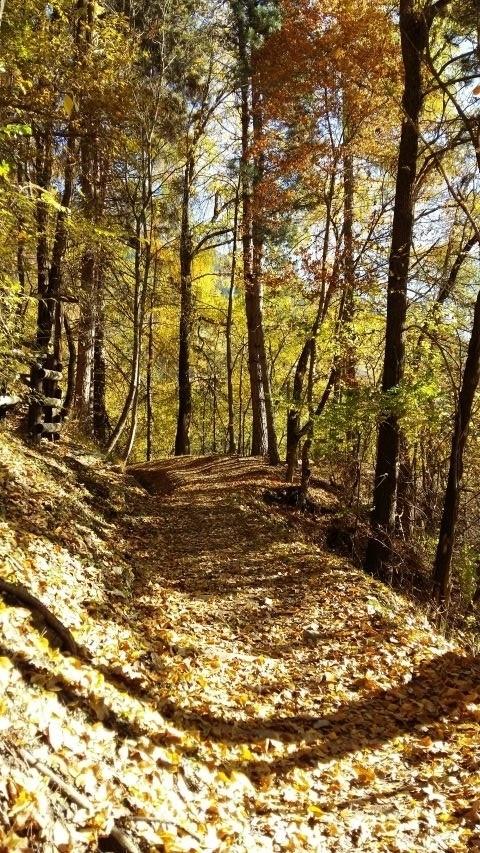 Vinschgauer Höhenweg im Herbst