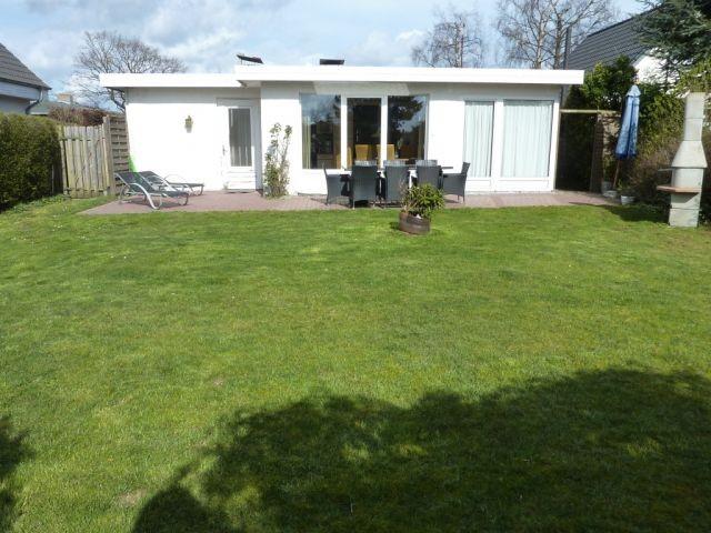 Terrasse und Garten Lachmöwe