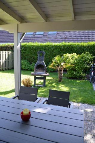 Blick in den Garten mit Palme und gemauertem Grill
