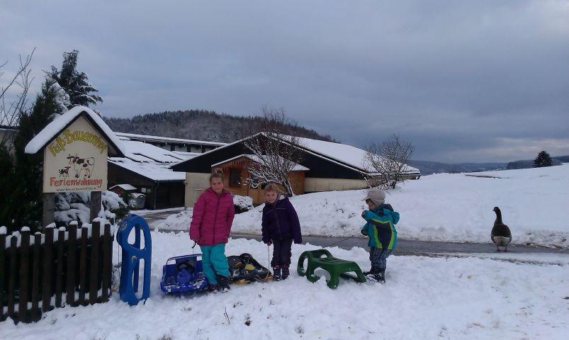 Kinder am Familienbauernhof