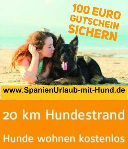 Neu:  Unser 100.- Euro Ferienhaus-Gutschein