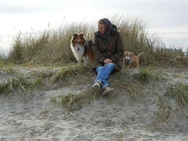 Lust auf Meer und Strand