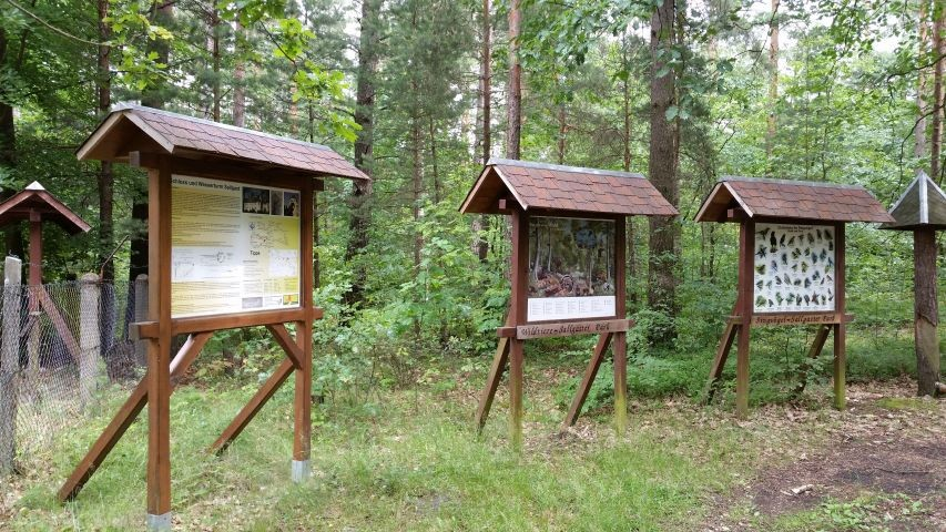 Lehrtafel der Waldschule nebenan
