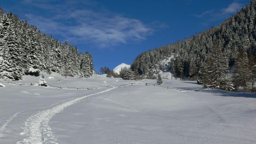 Winterwanderung  Avingatal