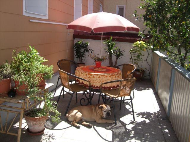 Terrasse mit unserem Hund, Herr Gustl