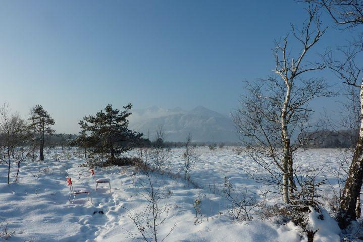 Überseeer Moor im Winter