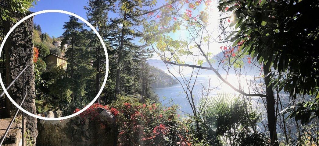 Einzigartige Lage im Gruenen Paradiesgarten beim See