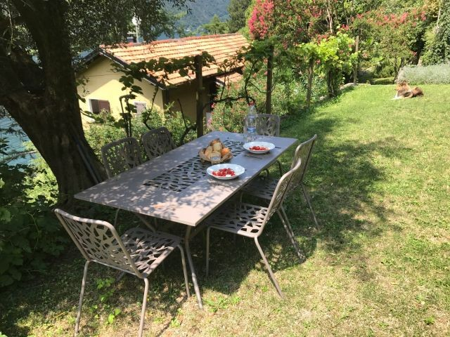 Essen im Schatten vom alten Olivenbaum