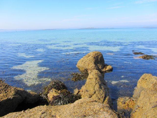Der Küste. Hier bei uns gibt es keine Probleme mit Grünalgen