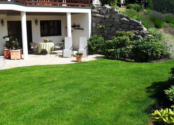 Wiese und Terrasse, Hunde dürfen frei laufen. Grundstück ist mit Hecke eingezäunt.