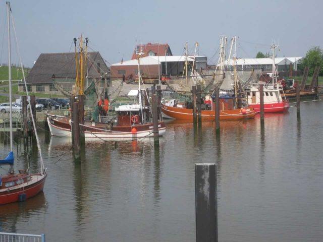 Blick auf den Krabbenkutterhafen