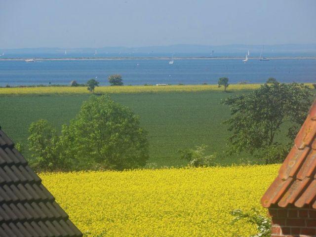Meerblick auf die Ostsee