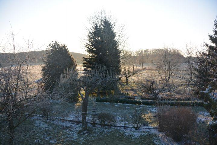 Morgendliche Winterstimmung im Garten