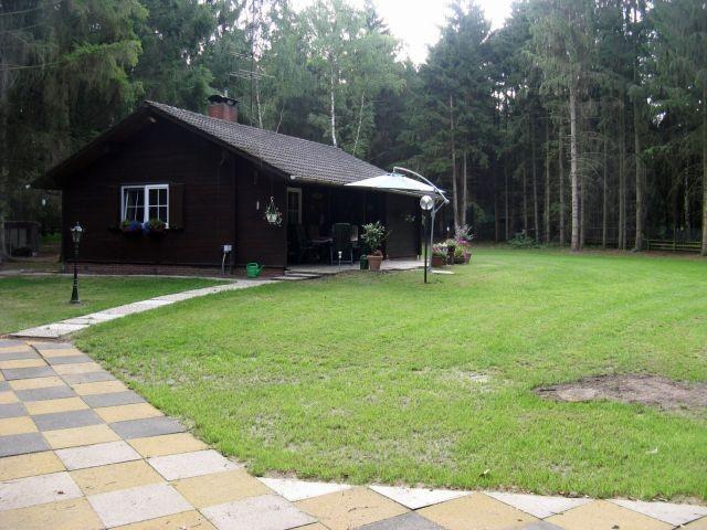 Blick auf Haus und Garten