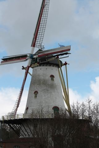 Windmühle in Burgh Haamstede