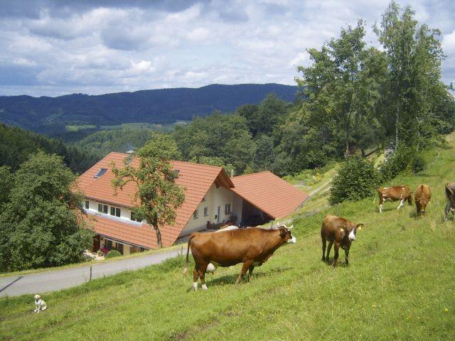 Blick auf den Langenberghof mit Panoramasicht