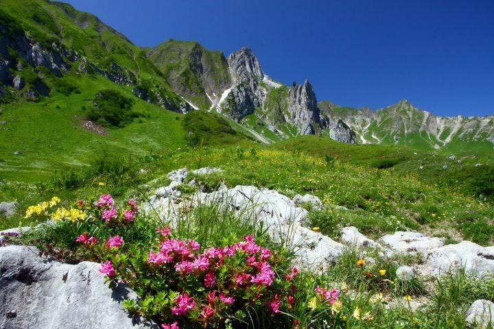 Wandern, Wandern, Wandern und die Aussicht und Natur genießen , Ihr Allgäu !