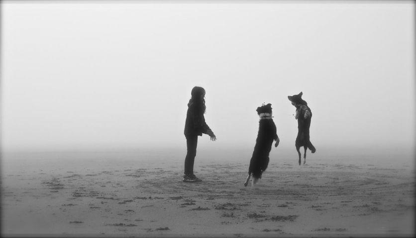 Spiele Strandes