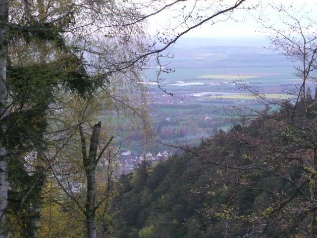 Blick über Bad Harzburg