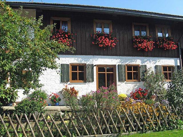 Urlaub auf dem Landhof in Bayern mit Hund