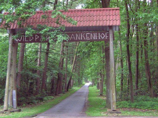 Wildpark und Märchenwald liegen zusammen.