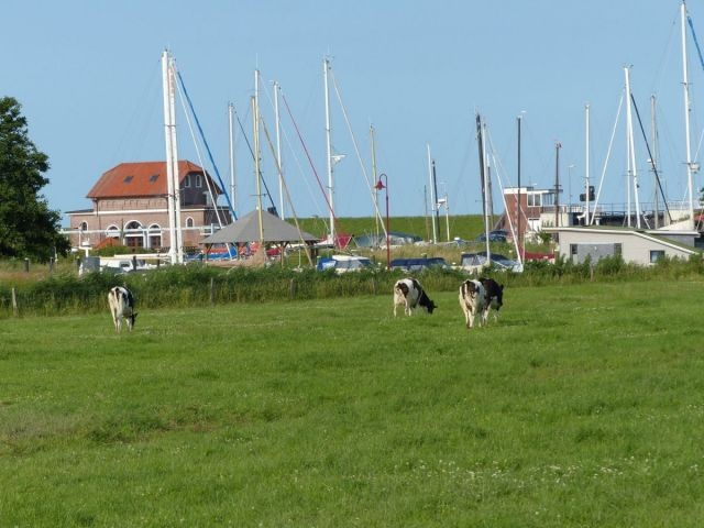 Am Vareler Hafen