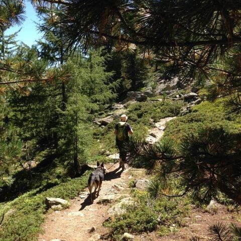 Wandern auf den Kaitersberg