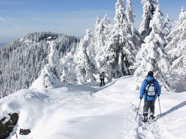 Schneeschuhwanderung auf dem Kaitersberg