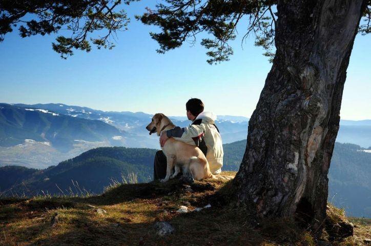 Idylle auf den Bergen genießen